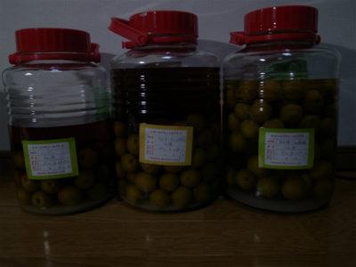 うどよし書道教室 恒例 2011年梅酒づくり